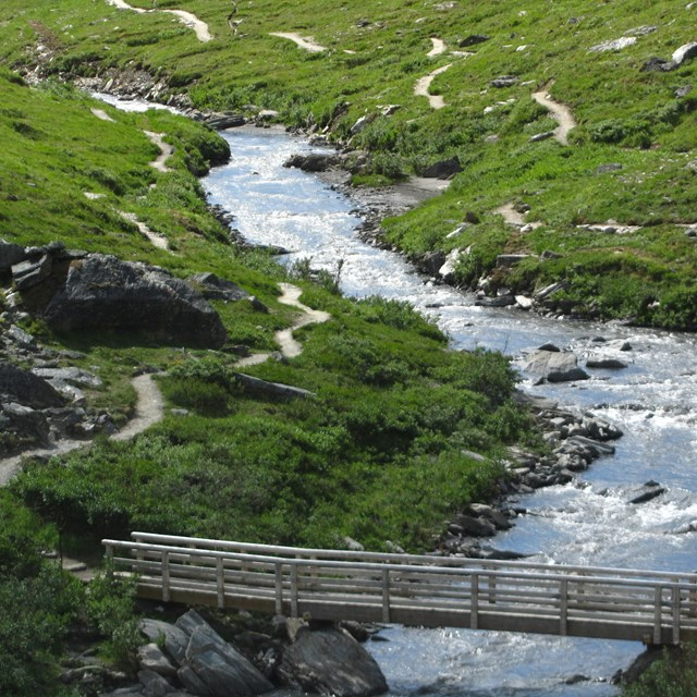 a bridge crossing a small river with a trail visible on either bank