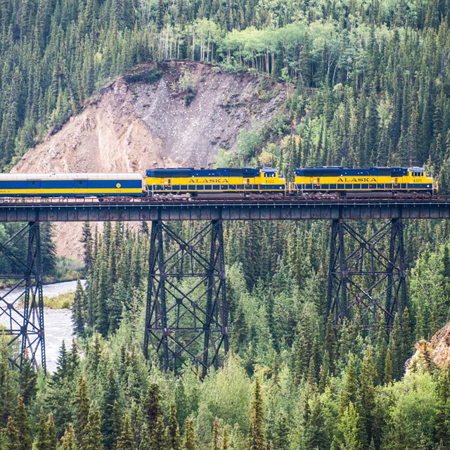 a blue and gold colored train on a railroad bridge high above a forested creek