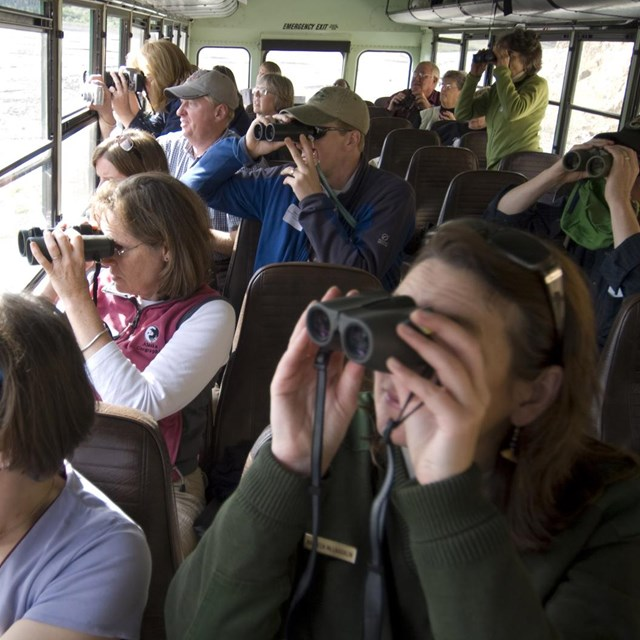 visitors on a bus use binoculars to look out the window