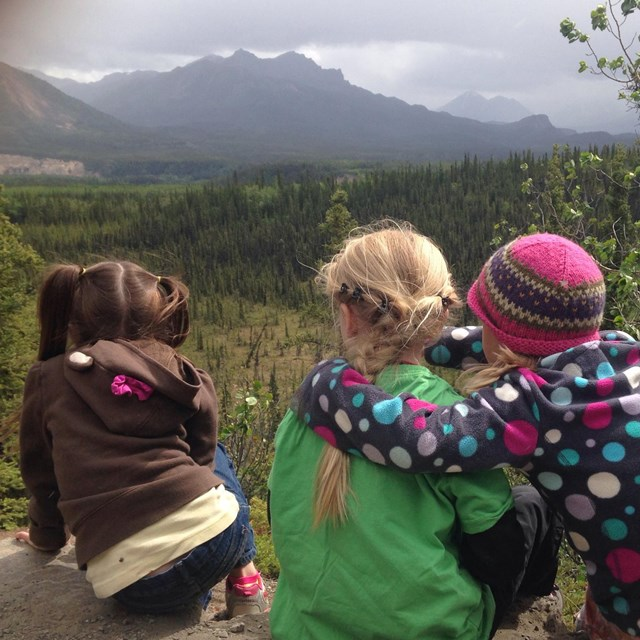 three small kids sitting at an overlook above a forested meadow