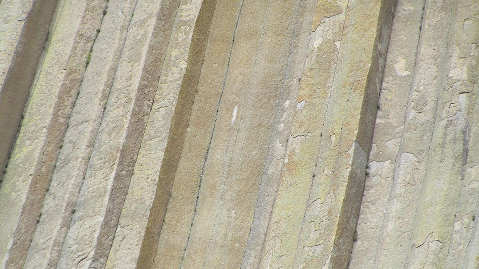 close up of vertical columns of rock that makes up Devils Tower