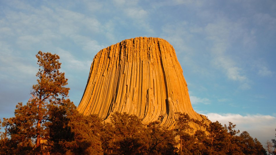 Devils Tower looms 867 feet above the trees.