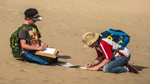 Two students writing observations while sitting on the sand.