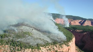 Smoke rises from fires on a forested bluff