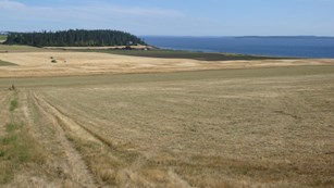 NPS seeks proposals for farm lands in Ebey's Landing NHR