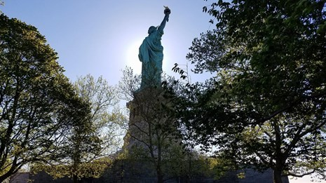 From the grounds of Liberty Island, the back-lit Statue is seen behind trees.