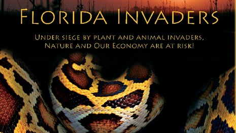 Florida Invaders