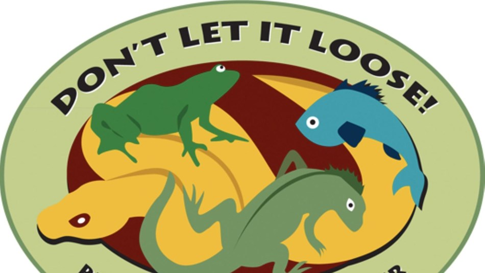 Don't Let it Loose Program Logo