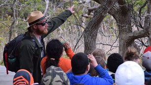 A park ranger points toward a tree as children use binoculars to look closer.