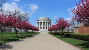 View of memorial rotunda down stone path flanked by pink flowering trees