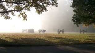 Sidewalk past trees and cannons in a foggy field