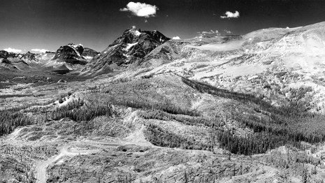 historic photo from the 1930s of Glacier Looking Glass lookout