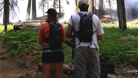 Two hikers on a hiking trail observe smoke rising from a nearby forest.