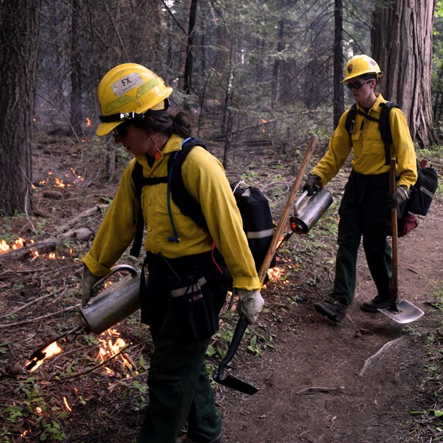 Two women firefighters work together on a prescribed fire.