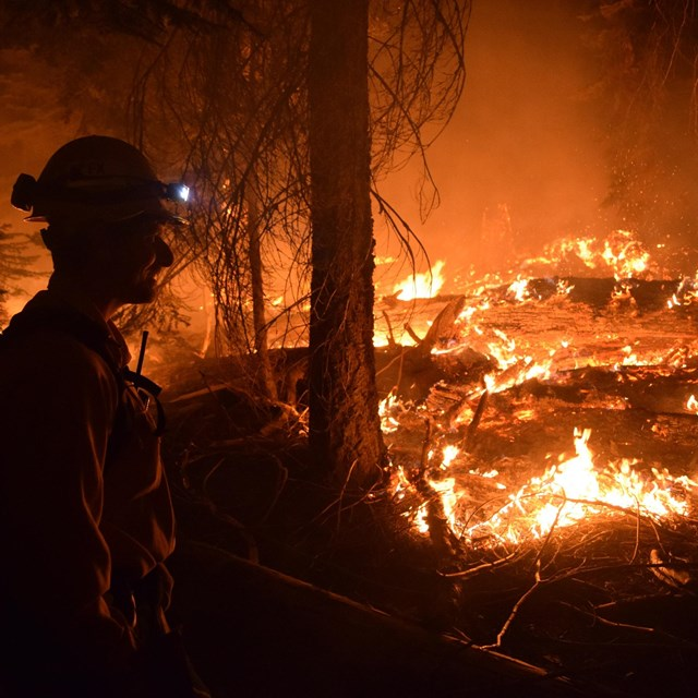 A firefighter monitors a fire in a national park.