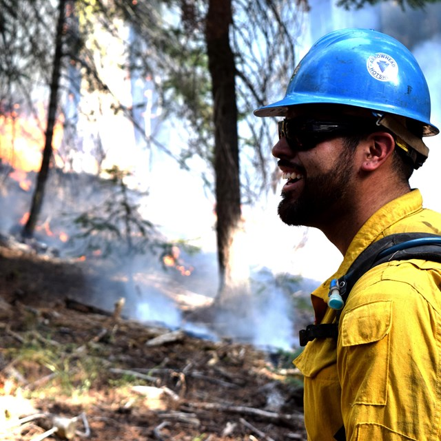 A firefighter observes a wildfire.