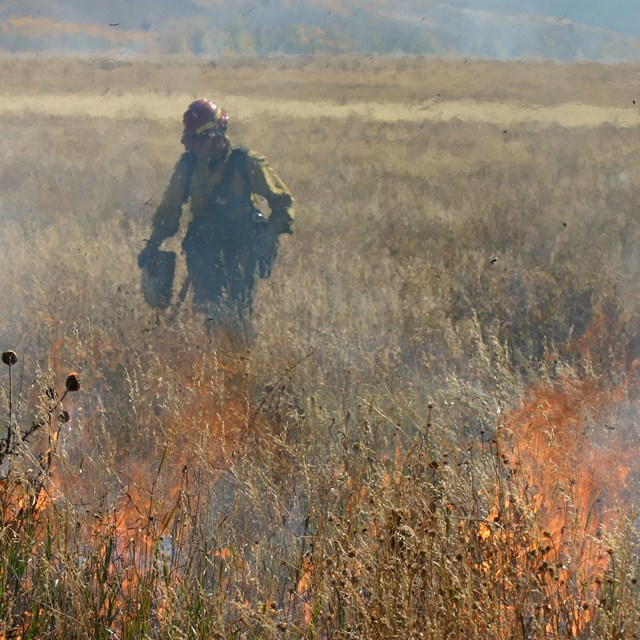 Prescribed burns at Grand Teton National Park