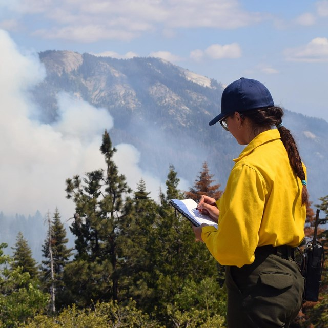 Woman fire manager taking notes about a prescribed fire