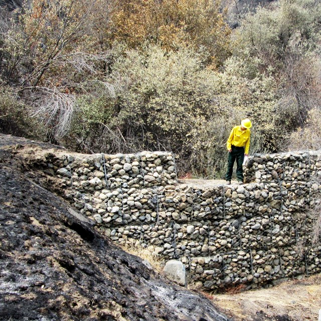 A fire scientist studies how to protect a critical watershed post-wildfire.