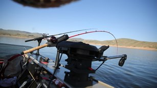 two fishing poles bent with tension off of a boat