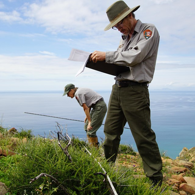 Scientists monitor native plant communities.