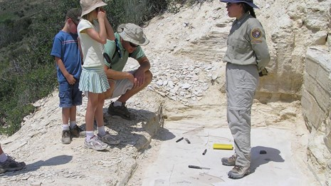 Intern with hikers in fossil research quarry