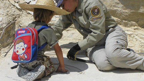 visitor looking for fossils during program