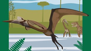 2018 National Fossil Day Artwork Quetzalcoatlus