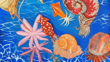 colorful drawing of prehistoric sea animals