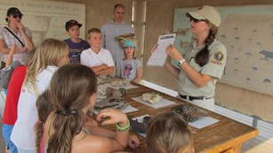ranger-led group activity learning about fossils