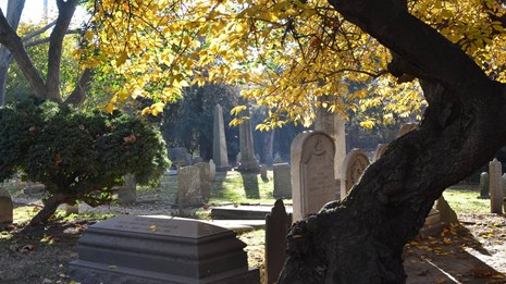 Sun shines through golden leaves above a gravestone.