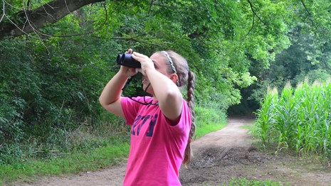 A girl in a bright pink shirt and blue jeans looks up through the trees using binoculars.
