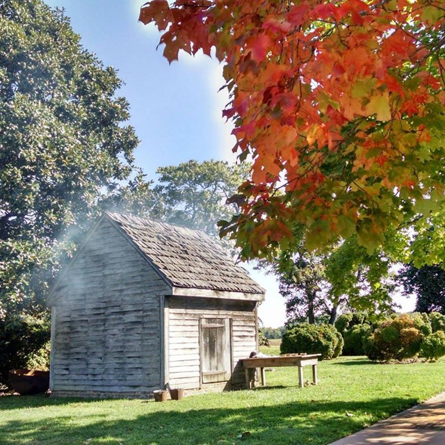 Smoke and fall leaves line the photo of the smokehouse on the plantation.
