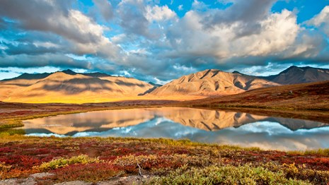 Mountain reflection in a tundra pond in fall