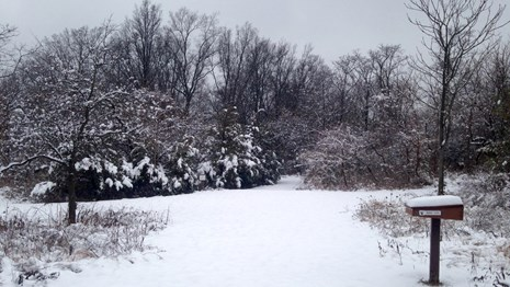 Picture of the Wildlife Refuge in the snow.