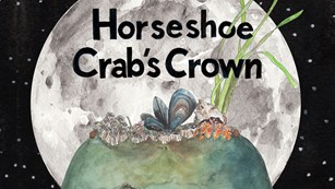 Cover of Horseshoe Crab's Crown