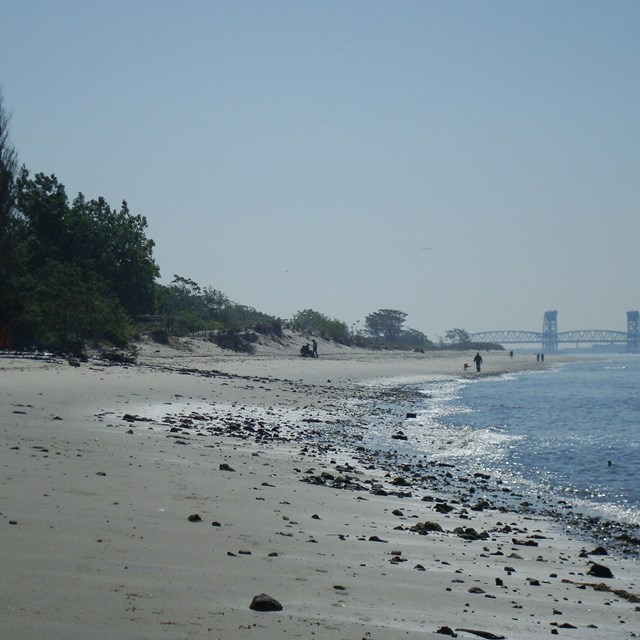 View of beach and shoreline at Plumb Beach with bridge in the background