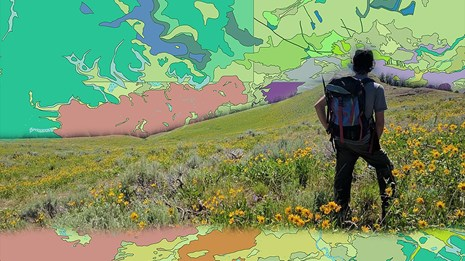 photo-illustration person in meadow with geologic map background