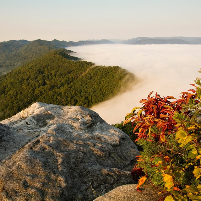 Cumberland Gap Appalachian Highlands Photo by Scott Teodorski