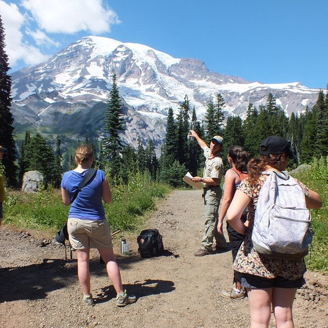 visitors looking toward mount rainier