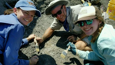 three people working on fossil dig