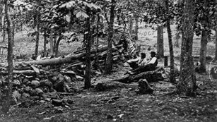 A black and white photo of two men sitting on a rock, among a grove of trees, behind a stone wall.