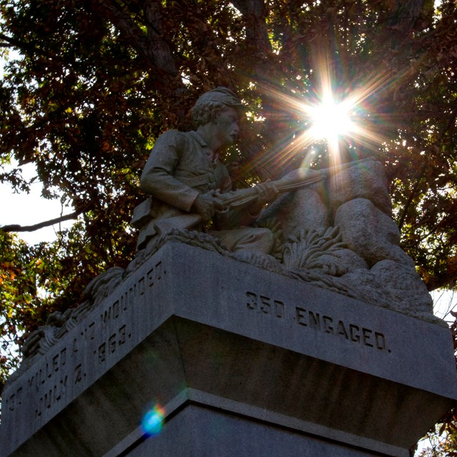 The sun shines through a tree over the head of statue at the top of a monument.