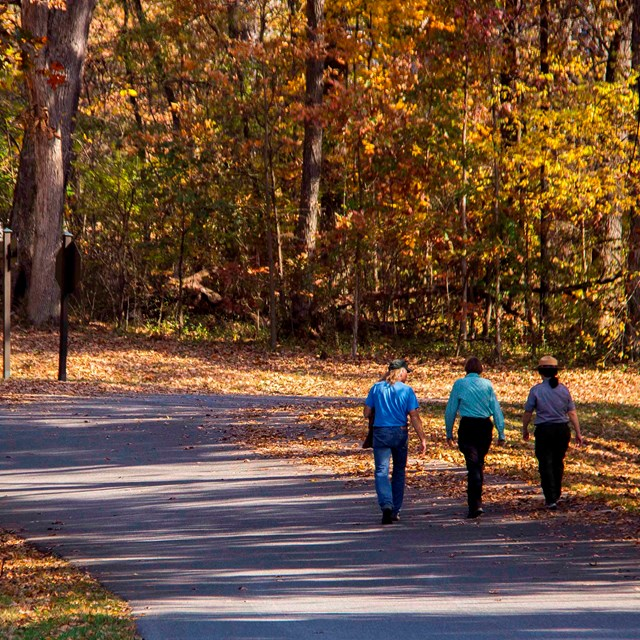 Three people walk along a road and up the hill. It's autumn and the leaves are orange and yellow.
