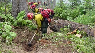 line of firefighters use hand tools to dig in backcountry