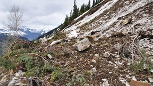 Pile of debris from rockslide pours over road retaining wall