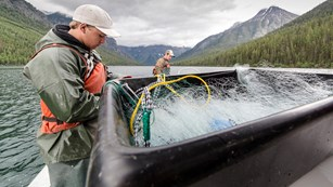 Intern working on nets as part of the Quartz Lake Fish Project