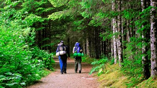 two hikers with backpacks walk down forested trail