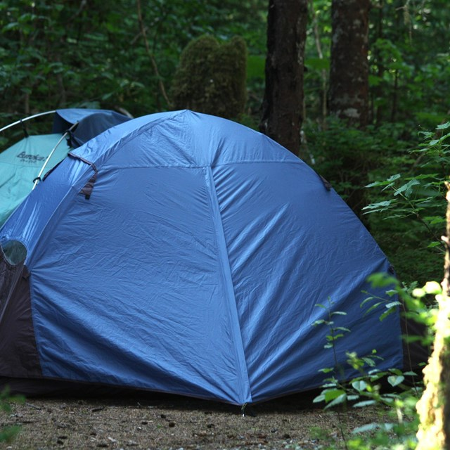 Bartlett Cove Walk-in Campground