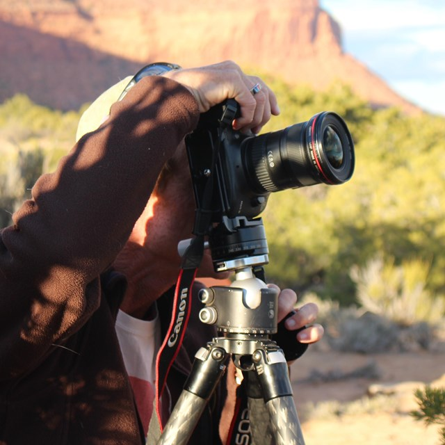 Photographer peers into camera mounted on tripod